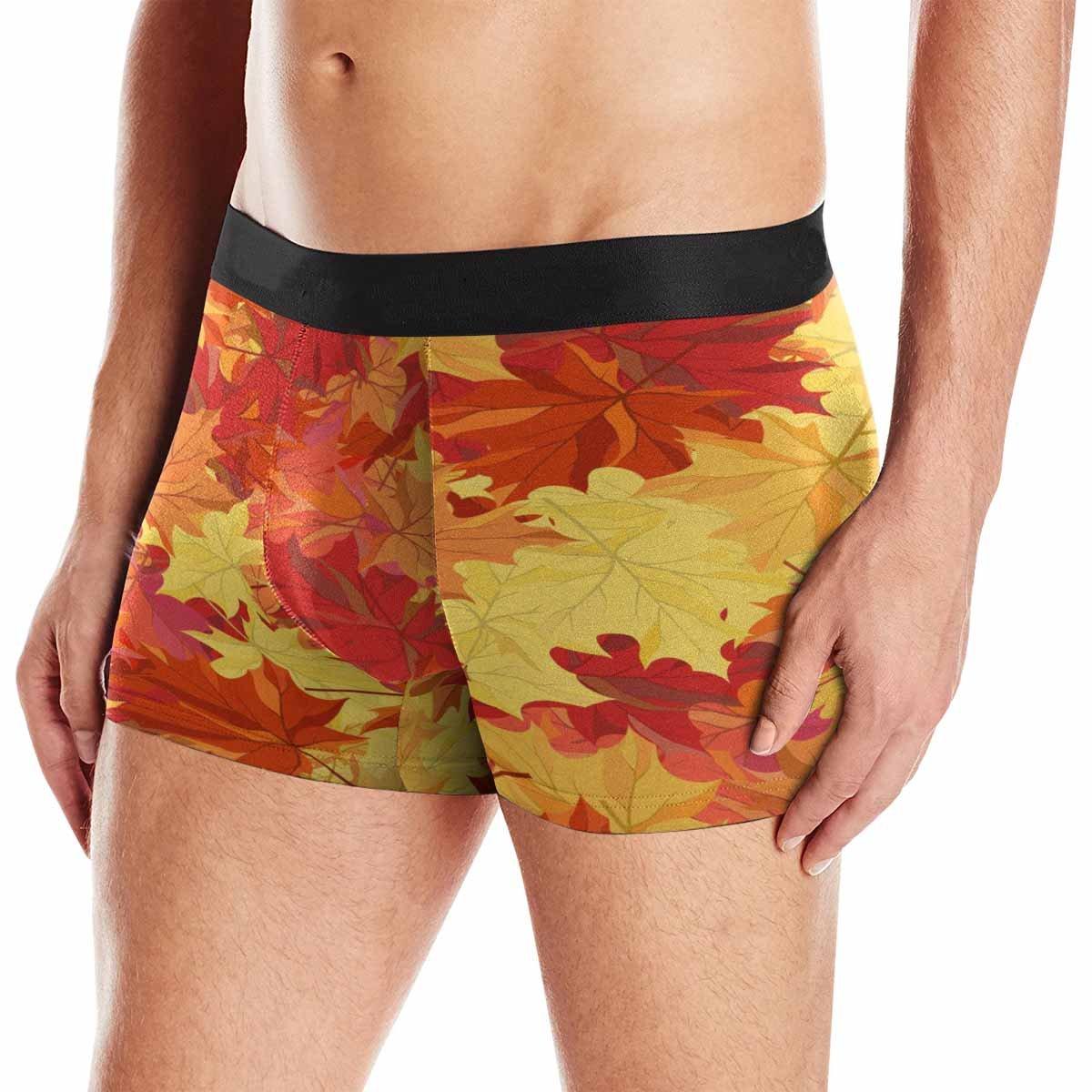 XS-3XL INTERESTPRINT Mens Boxer Briefs Underwear Autumn Maple Leaves