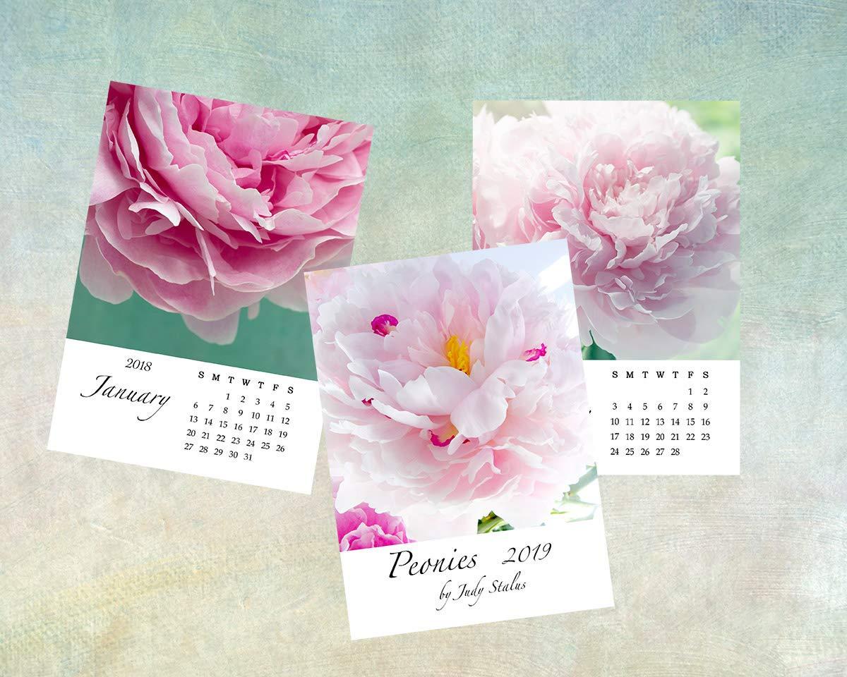 2019 Peony Flower Desk Calendar, 5 x 7