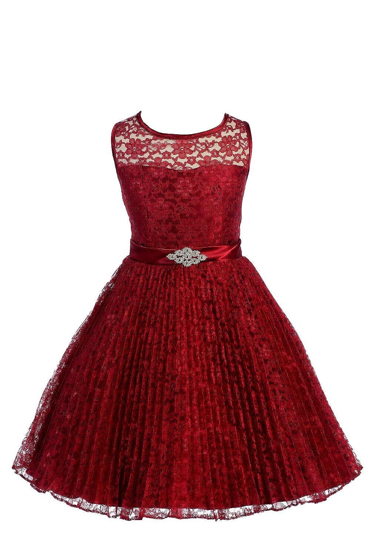 Amazon.com: JM DREAMLINE Lovely Tulle Pleated Lace Flower Girl Dress: Clothing