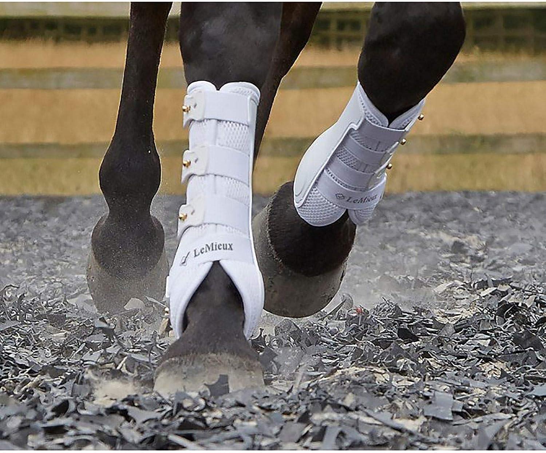 LeMieux Front Snug Boots Dressage Schooling Flexible Breathable Support