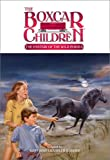 The Mystery of the Wild Ponies (Boxcar Children Mysteries)