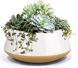 LA JOLIE MUSE Large Succulent Planter Plant Pots, Ceramic Indoor Outdoor Garden Pot with Drainage for Plant Flower, 8 Inch, Sandy Beige & White
