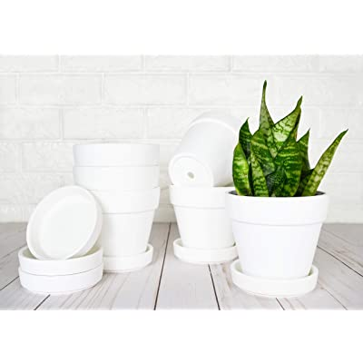 My Urban Crafts 4.7 Inch Plant Pots Indoor Set of 6 Round Ceramic Planters with Saucer Modern Decorative Garden Flower Pots with Drainage White Pots for Succulents, Snake Plants (Matte White Bisque): Garden & Outdoor