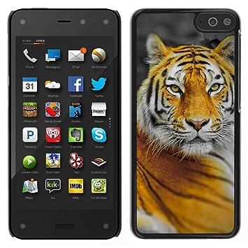 NATURE ORANGE TIGER YELLOW JUNGLE CAT BIG: Amazon.es ...