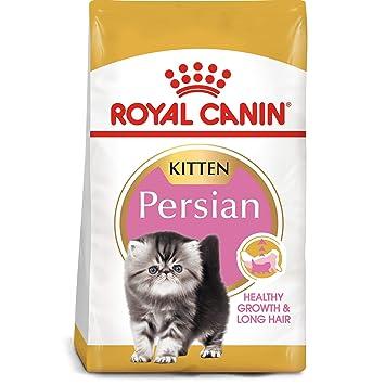 ROYAL CANIN - Comida para Gato Persa, 3 Libras: Amazon.es ...