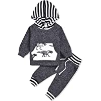 Ritatte Infant Toddler Boys Girls Sweatshirt Set Winter Fall Clothes Outfit 0-3 Years Old,Baby Plaid Hooded Tops Pants (Dinosaur, 18-24 Months)