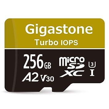 Amazon.com: Gigastone adapter High Speed Memory Card ...