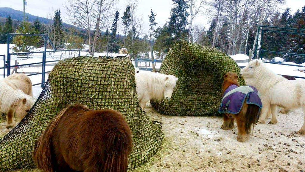 Tech Equestrian KNOTLESS Heavy Duty 5mm Thick Round Bale Slow Feed Hay Net 6x6 (Hole_Size_1.5 inches) by Tech Equestrian
