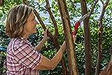 Corona RazorTOOTH  Folding Pruning Saw, 10 Inch