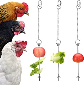 3 Pieces Stainless Steel Hanging Feeder Chain Toy Veggies Skewer Fruit Vegetable Holder with Chain for Hens Pet Chicken Bird Parrot