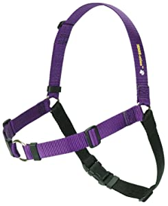 SENSE-ation No-Pull Dog Harness (Purple, Large Wide) by Sense-Ation Harness