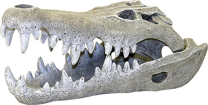 Top 10 Alligator Aquarium Decor