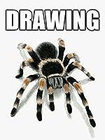 Time Lapse 3D Drawing: Tarantula Spider [OV]