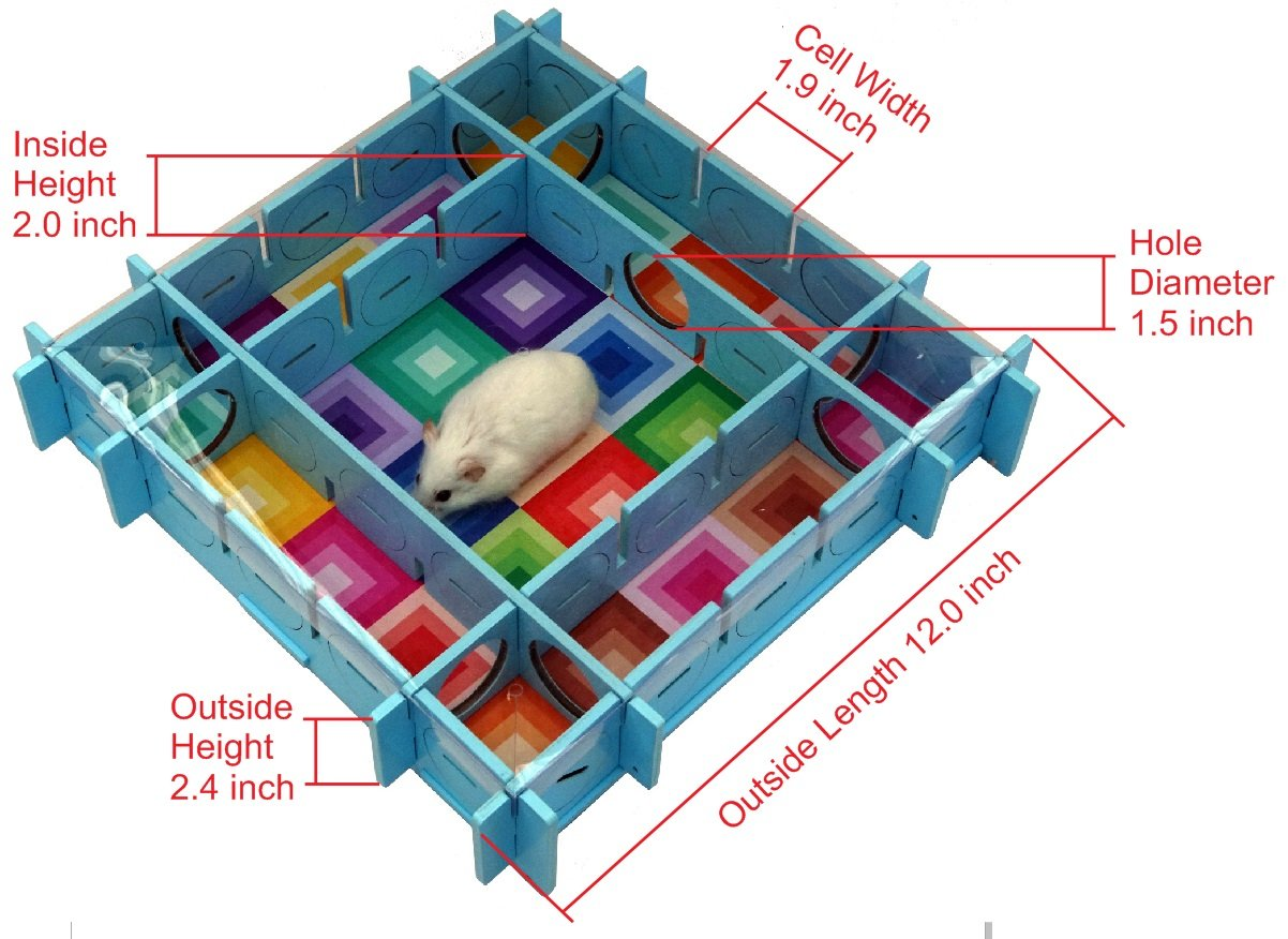 Playtime Maze Reconfigurable Maze for Dwarf Hamsters, Mice and Small Rats by Playtime Maze (Image #3)