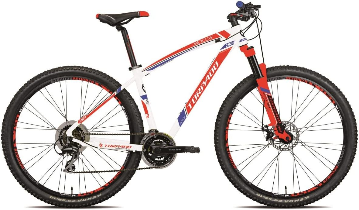 Torpado MTB Mercury bicicleta 29 pulgadas aluminio 3 x 7 v disco ...
