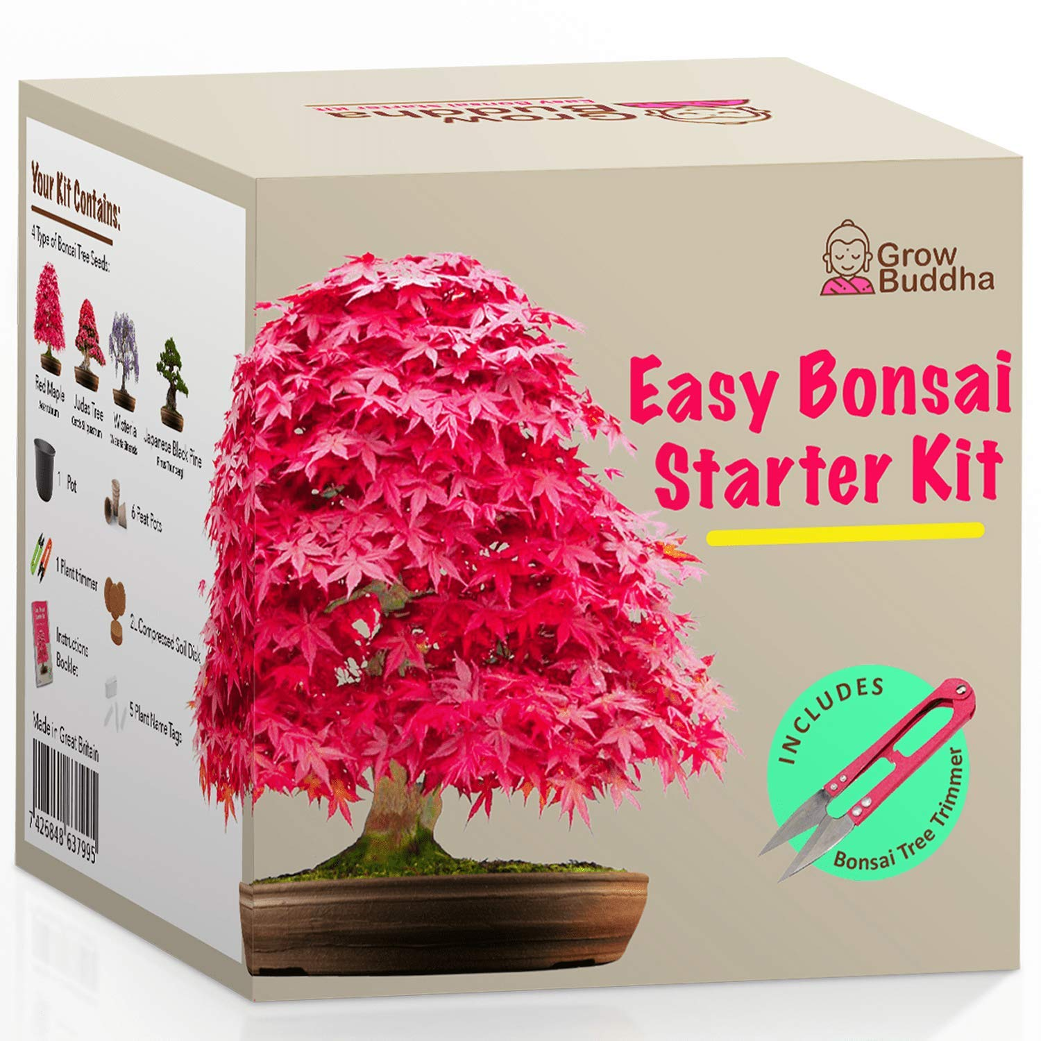 Grow Your own Bonsai kit - Easily Grow 4 Types of Bonsai Trees with Our Complete Beginner Friendly Bonsai Seeds Starter kit - Unique Seed kit Gift idea