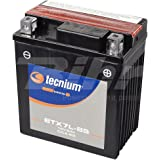 battery Platinum ytx7l de BS