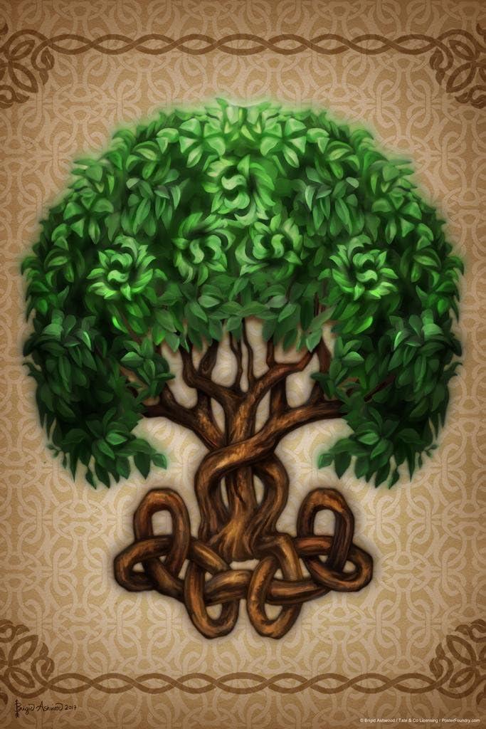 Celtic Tree of Life by Brigid Ashwood Cool Wall Decor Art Print Poster 24x36