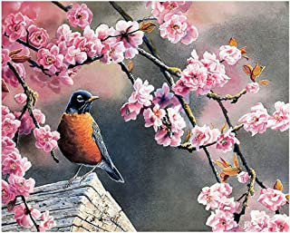 DIY Painting By Numbers Oil Paint Adult Hand Painted Kits Paint-Hope 16'x20' (Frameless)