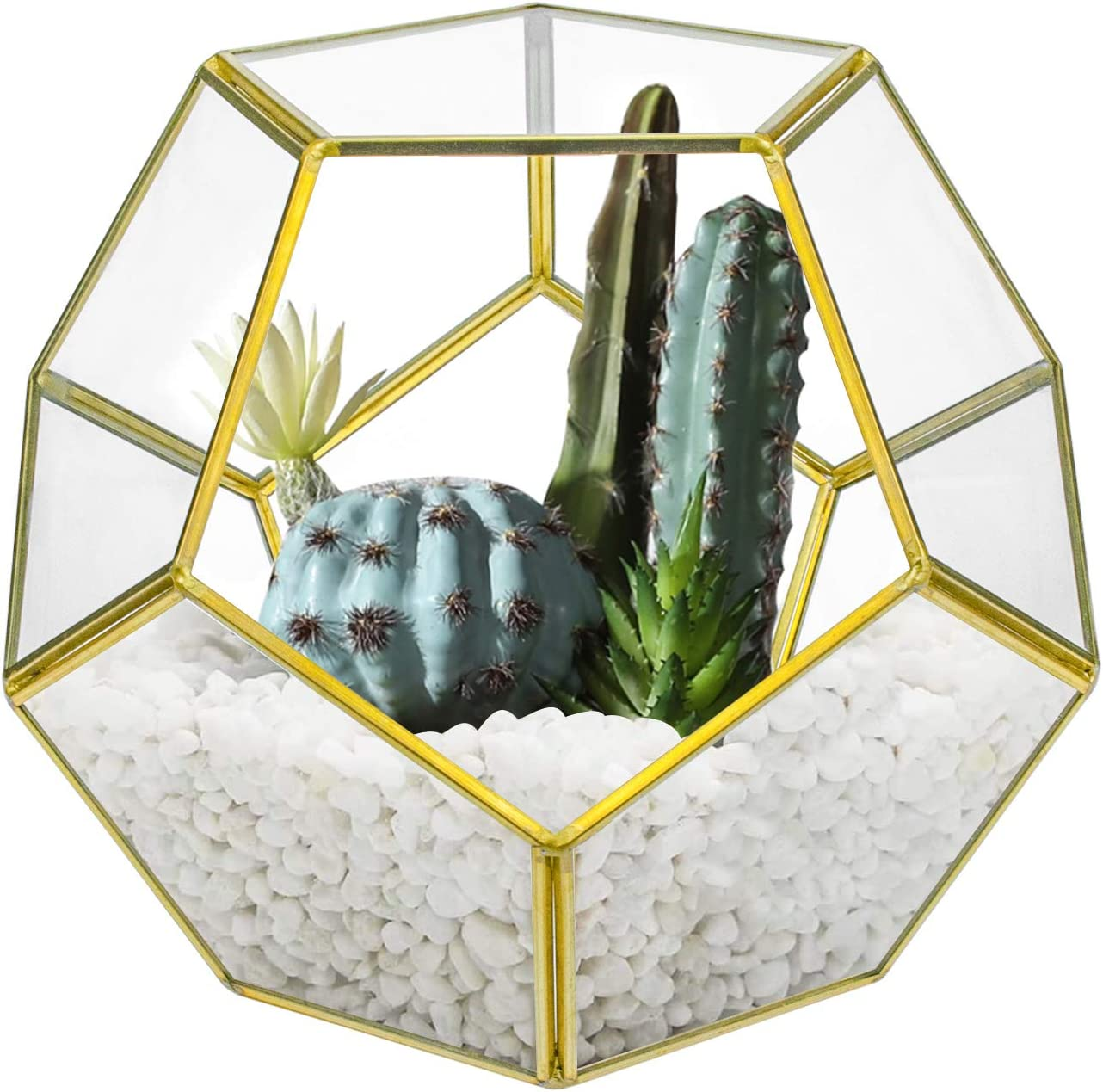 Suwimut Glass Geometric Terrarium, 7.5 x 7.5 x 6.3 Inches Pentagon Regular Planter Container for Succulent, Fern, Moss, Air Plants, Miniature Fairy Garden, Home Shelf Decor (No Plants Included)