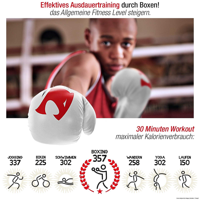Perfekter Boxing Handschutz f/ür Das Training am Sandsack /& Boxsack empfohlen vom Berliner Boxverband Sportstech Boxhandschuhe aus strapazierf/ähigem PU-Leder f/ür Kinder mit doppelter Qualit/ätsnaht
