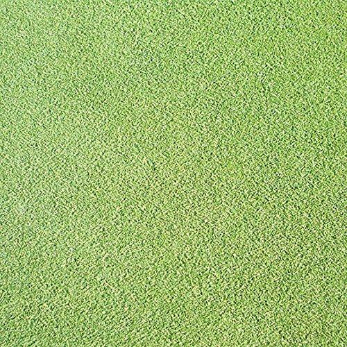 【種 2kg】 ベントグラス CY-2 シーワイツー コート種子 芝生用 緑肥 [播種期:3~10月] 雪印種苗 米S代不 B06XYL9J61