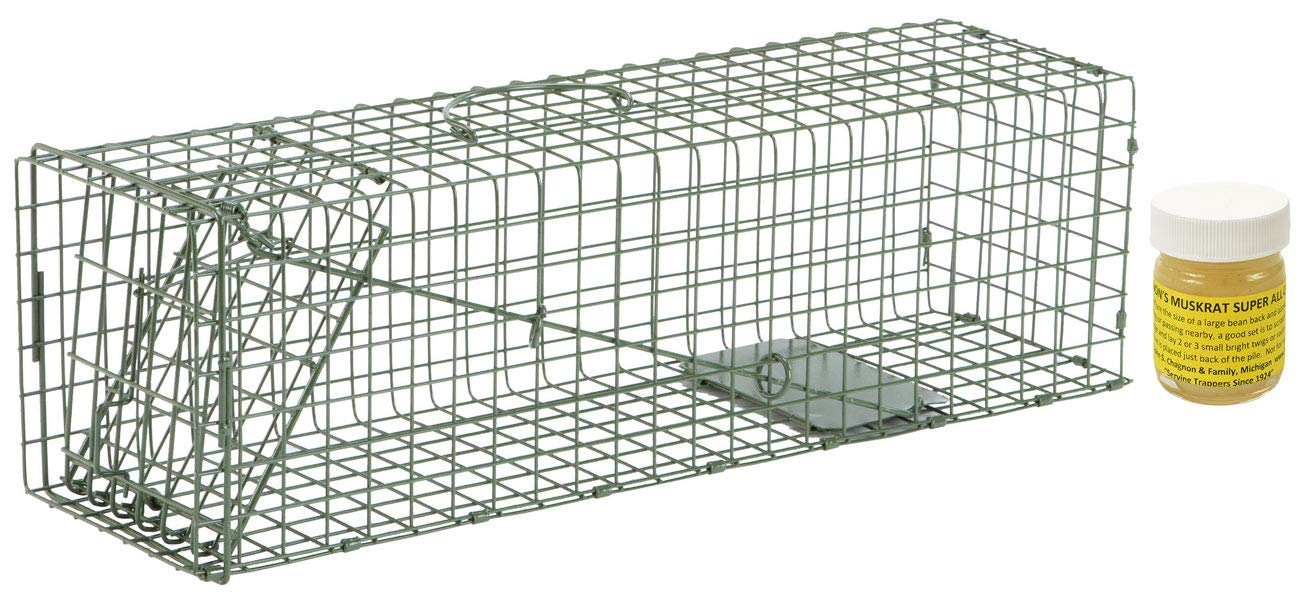 #2 Model 1105 Standard Single Door Cage Trap with Lenon Lure Muskrat Super All Call 1oz Included by Duke Traps