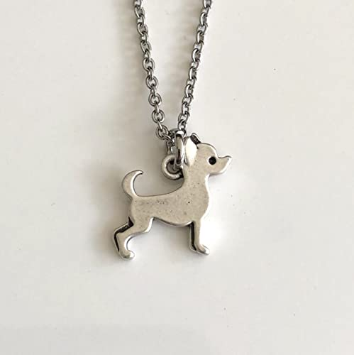 0cdac71eaaf7d Amazon.com: Chihuahua Necklace on Stainless Steel Chain - Chi Dog ...
