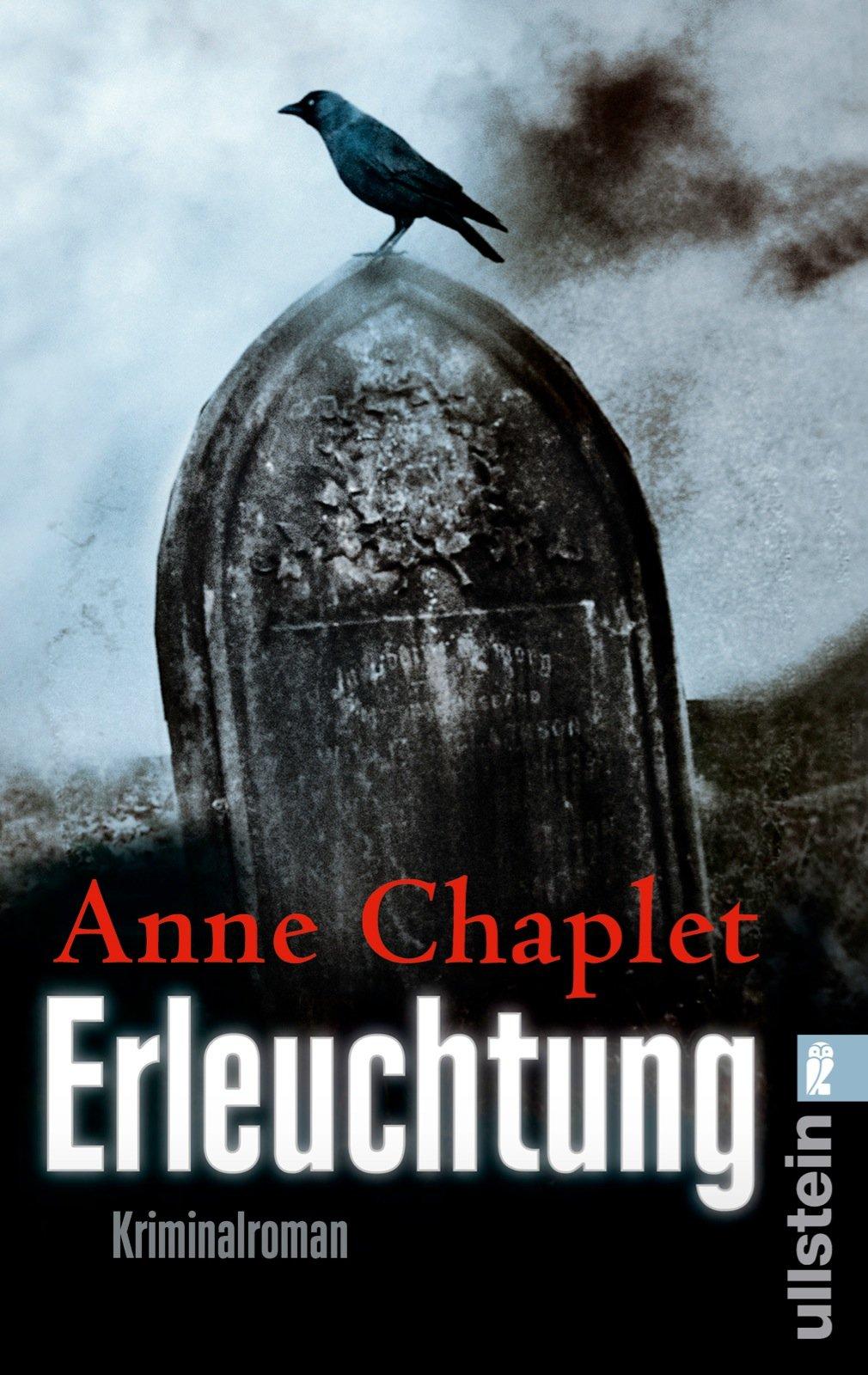 Erleuchtung: Kriminalroman (Ein Karen-Stark-und-Paul-Bremer-Krimi, Band 8)