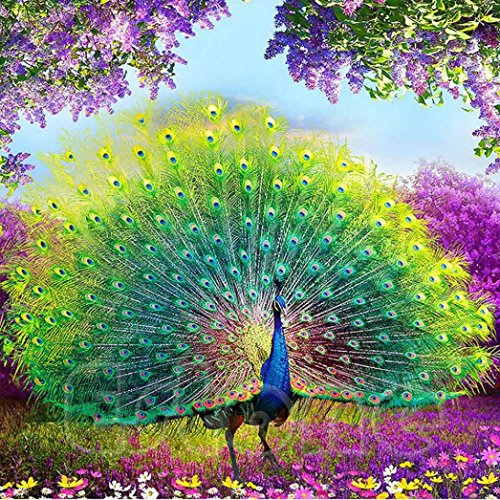 Hot Sale!Daoroka 5D DIY Diamond Embroidery Painting Wall Sticker Peacock Rhinestone Pasted Cross Stitch Home Decoration (35cm/13.78cm, A)