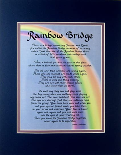 Amazoncom Rainbow Bridge Dog Memorial Wall Decor Poem Pet Saying