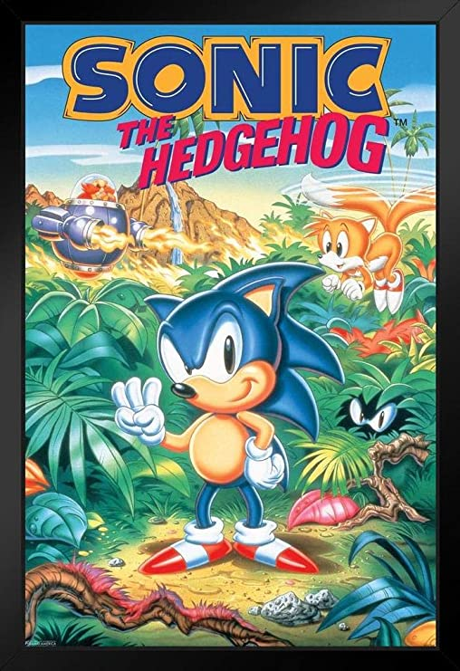 sonic the hedgehog video game logo