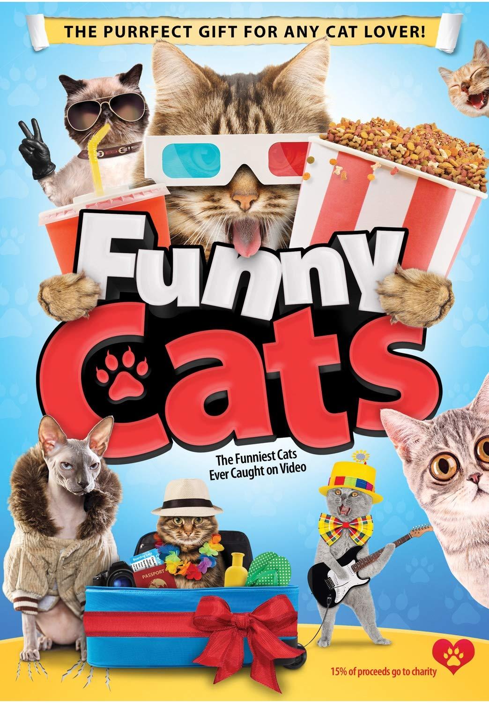 Amazon Com Funny Cats Tony Ryan Cindy Turning Sam Tork Ricky Iverton Kj Schrock Evan Tramel Ivan Roberts Ivan Roberts Movies Tv