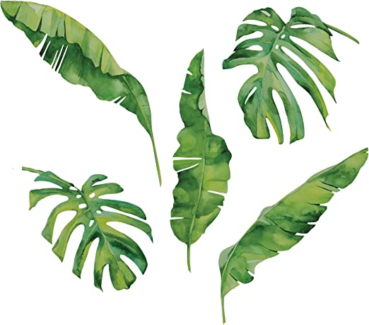 Amazon Com 5 Large Tropical Palm And Banana Leaves Wall Decals Eco Friendly Matte Fabric Wall Stickers Home Kitchen Polish your personal project or design with these tropical leaves transparent png images, make it even more personalized and more attractive. 5 large tropical palm and banana leaves