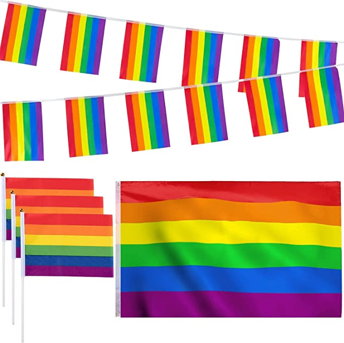 Rainbow LGBT Multicoloured Triangle Bunting 12 flags 5 metre Long Bunting