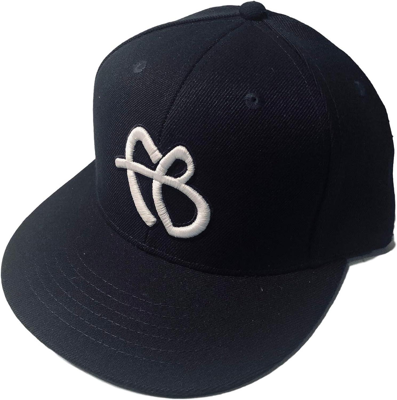 Fubu 25th Anniversary Collectors Edition Snapback Adjustable Mens Hat Cap Navy