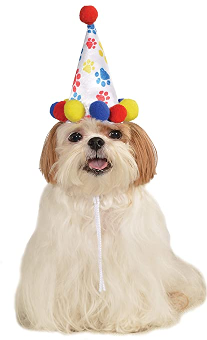 Rubies Pet Birthday Hat Medium To Large Boy Paw Print