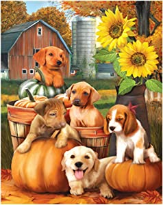 RICUVED DIY Oil Paint by Number, Canvas Painting by Numbers for Adults Kids Beginner with Paintbrushes Arts Craft Wall Decor Dogs 16x20 inch