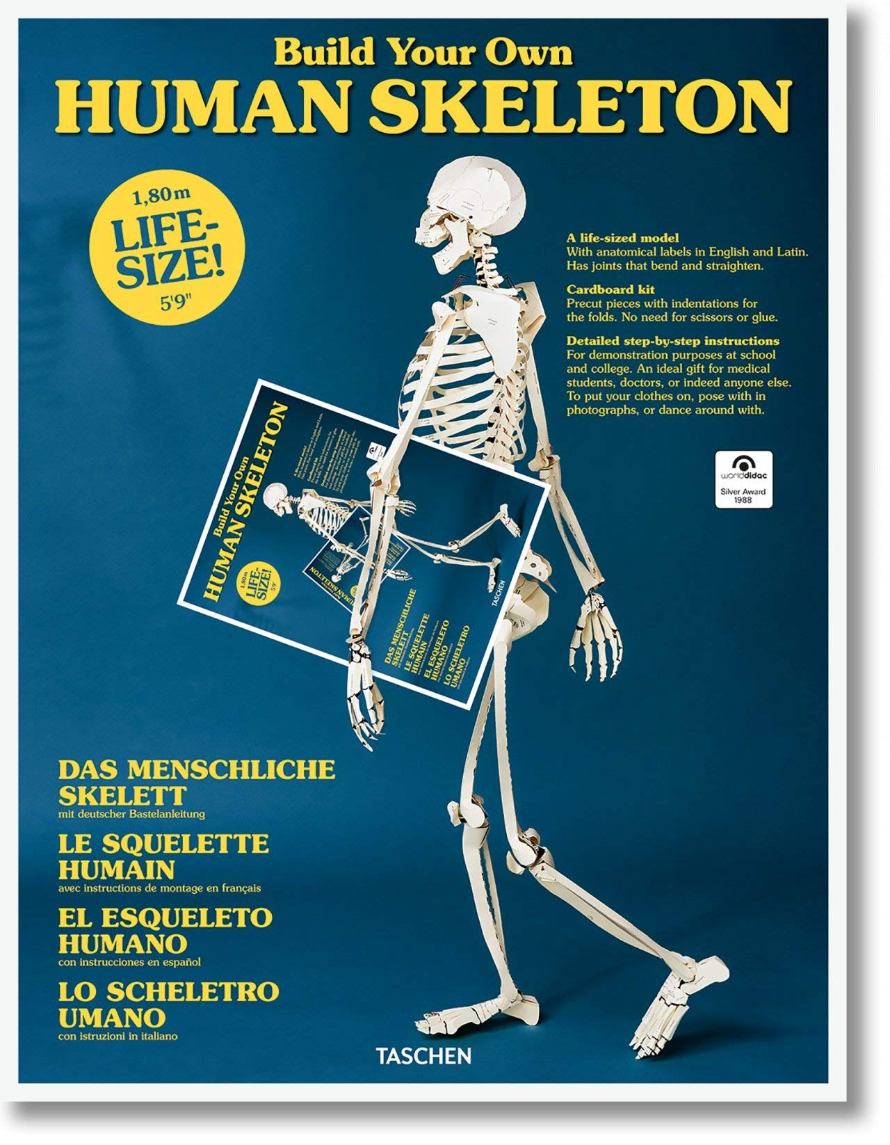 Build Your Own Human Skeleton Life Size Taschen 9783836572545