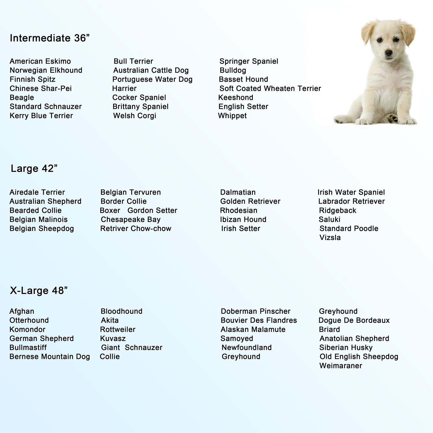 Walcut dog crate know the pros and cons before you buy it walcut dog crate dog size chart geenschuldenfo Images