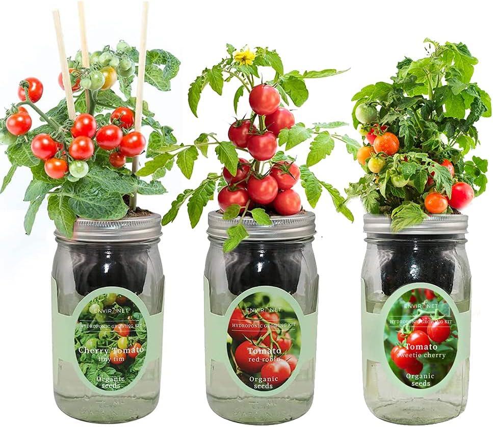 Environet Hydroponic Mason Jar Indoor Garden Seed Starter Kits - Tomato Trio Garden Growing Kits, Gardening Gift(Red Robin Tomato, Cherry Tomato - Tiny Tim, Sweetie Cherry Tomato)