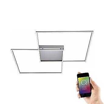 Paul Neuhaus Modern Deckenleuchte / Deckenlampe / Lampe / Leuchte LED 2 Flammig8W  Stahl /