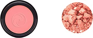 product image for Gabriel cosmetics Blush (Apricot), 0.17 Ounce,Natural, Paraben Free, Vegan,Gluten free,Cruelty free,No GMO,Press powder,enhanced with Sea Fennel, Full coverage, creamy and natural finish.