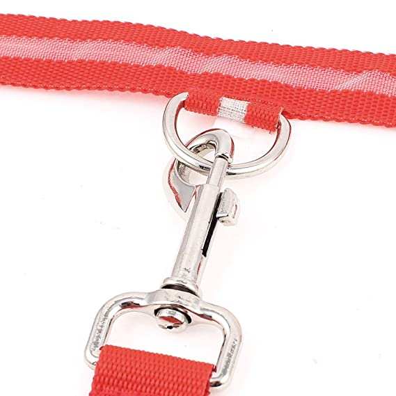 Amazon.com : eDealMax Perro de mascota de Nylon de luz LED Hebilla de liberación Correa Collar Ajustable, Rojo : Pet Supplies
