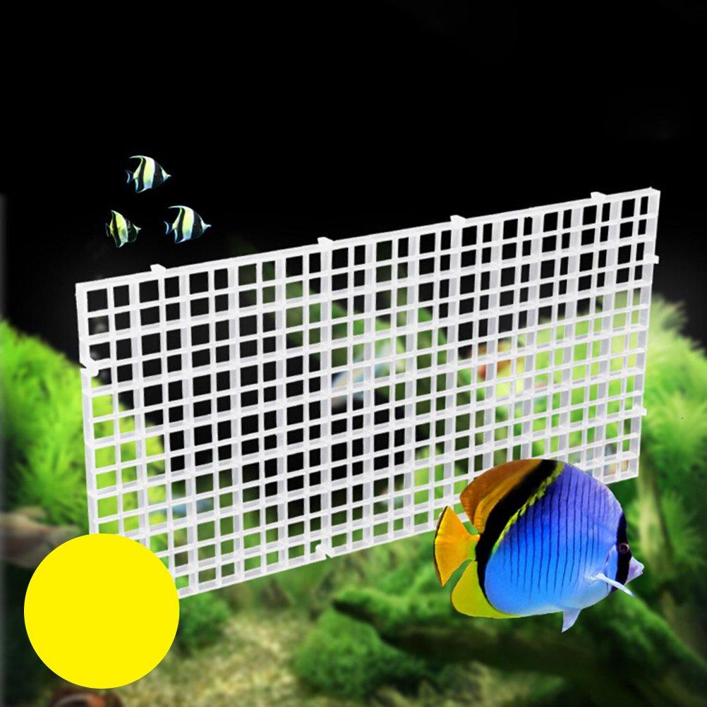 POPETPOP Fish Breeder Net Big Size Fry Tablero de Segregación con ...