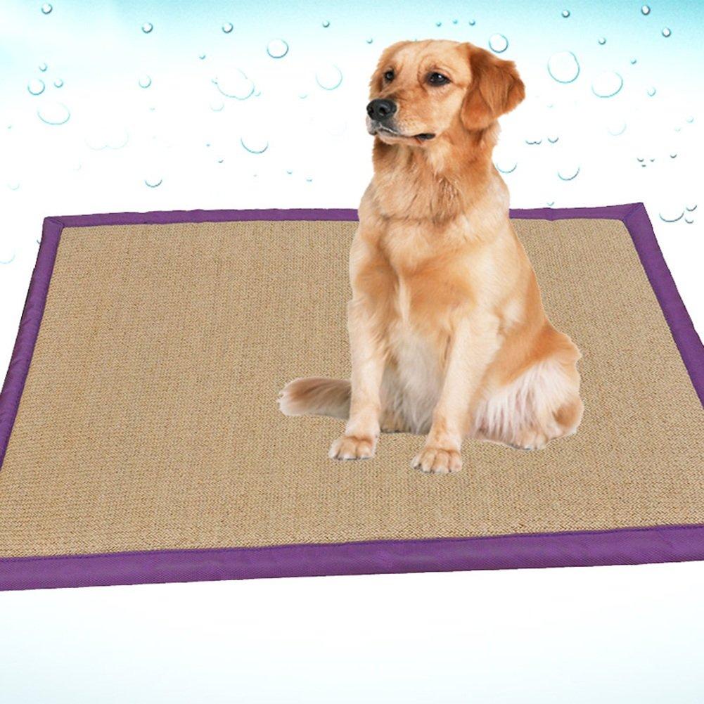 WENZHE Matratzen Sommer-Schlafmatten Strohmatte Teppiche Haustier-Pad Hundebett Golden Retriever Große Hunde, 2 Größen (Farbe : 100×80cm)