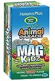 Natures Plus Animal Parade MagKidz 90 Chewables - Sugarfree