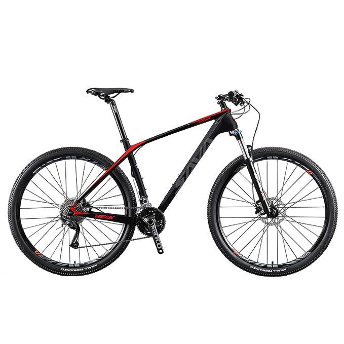 DECK2.0 Carbon Fiber Mountain Bike