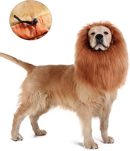 HINATAA Peluca de León para Perro, Ajustable, Elástico, con Orejas Abiertas, Pelo Suave, Navidad y Fiestas de Disfraces, Accesorios de León para Disfraz de Perro: Amazon.es: Productos para mascotas