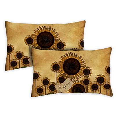 Toland Home Garden 771284 Folk Sunflower 12 x 19 Inch Indoor/Outdoor, Pillow Case (2-Pack) : Garden & Outdoor